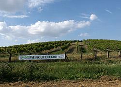 Weinlage Großjenaer Blütengrund
