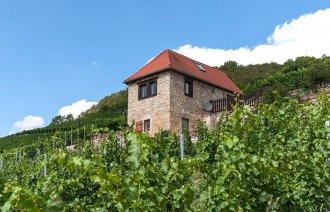Ferienwohnung im Weinbergshaus Freyburg Ehrauberge